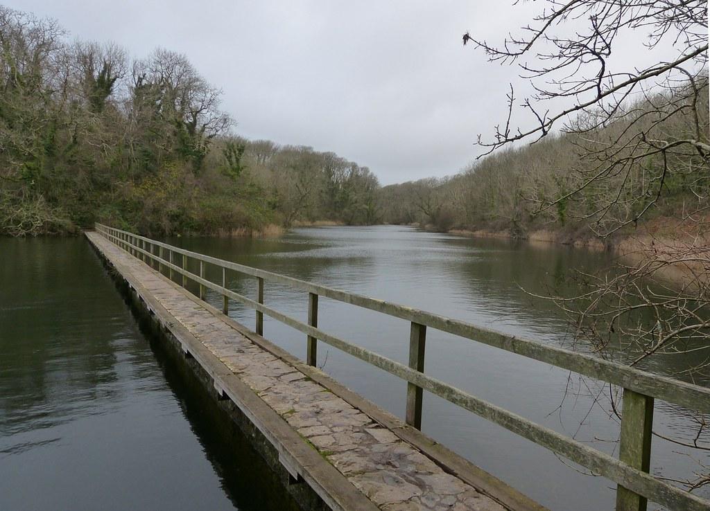 P1060437 - Bosherston Ponds