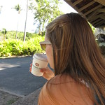 Caneel Bay tea