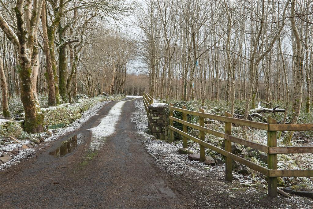 Cornameeltha Lane TMP_8864