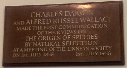 Plaque from the Linnean Society meeting room