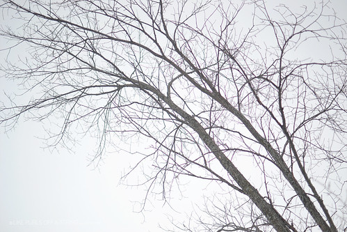 22-02-2014_06