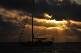 Tonga Offshore-47
