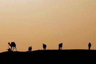 Atardecer en Saqqara, Egipto