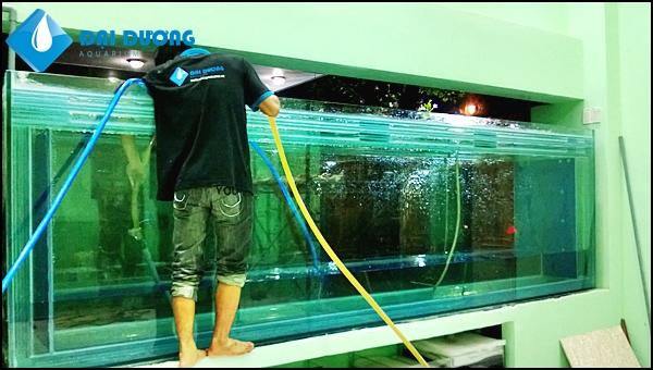 Hồ cá rồng khủng dài 4,7m