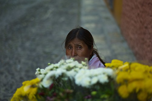a flower seller's eyes..