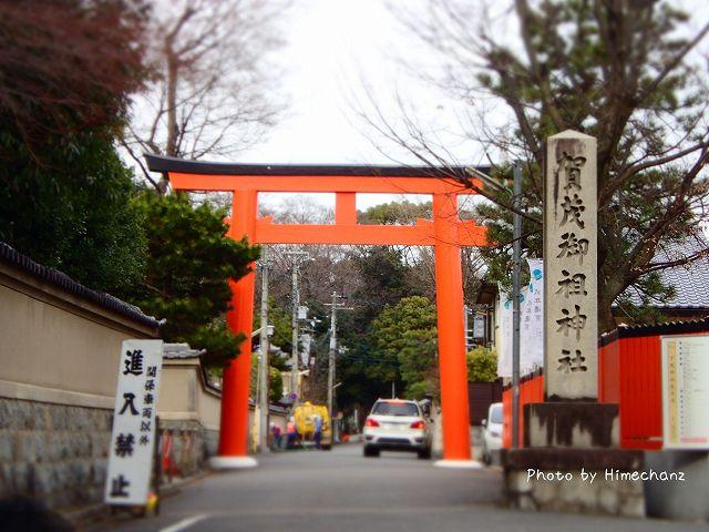 今年もやってきました賀茂御祖神社(下鴨神社)。