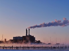 A pollutant is a substance introduced into the environment that has undesired effects on the area surrounding