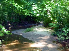 Valley Stream State Park (12)