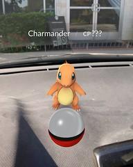 There's a wild Charizard in my car! #PokemonGo #Pokemon