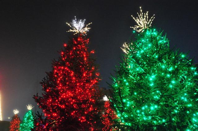 Christmas Light Atlanta Botanical Garden 2012 Flickr Photo Sharing