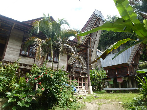 Sulawesi13-Makale-Rantepoao (36)