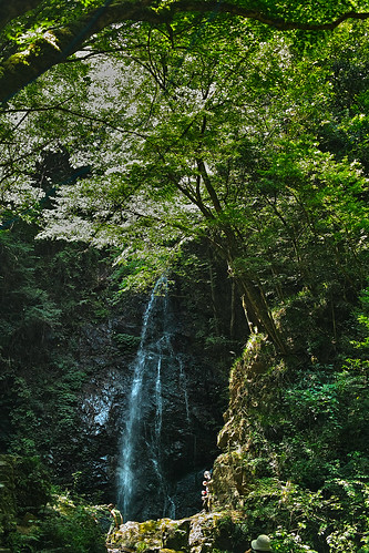 hossawanotaki