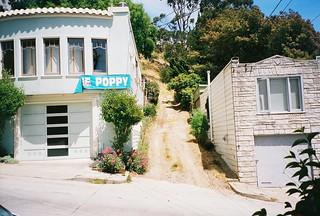 Poppy Lane (2001)