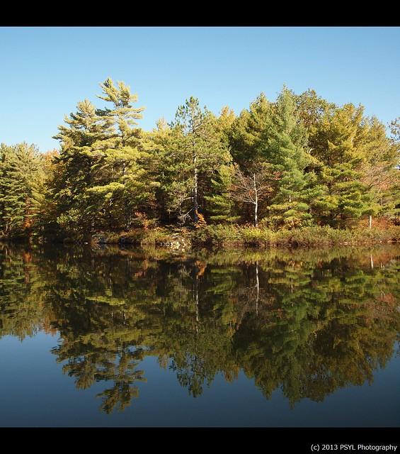 Wolf Lake Reflection 1