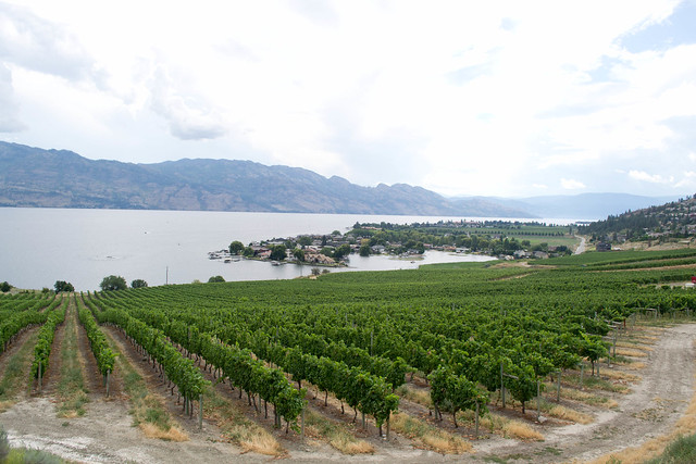 Quail's Gate Winery | Okanagan, Canada