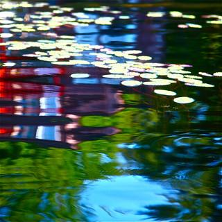 Reflet en couleurs au marais...!!!