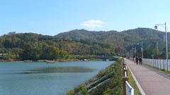 Cheonhoji Footpath and Bridge