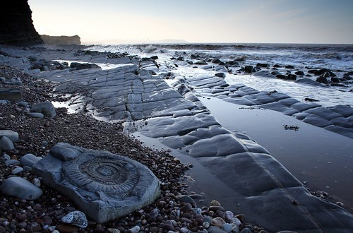 sea cliff beach water fossil coast seaside somerset coastline ammonite geology seashore kilve rockpavement