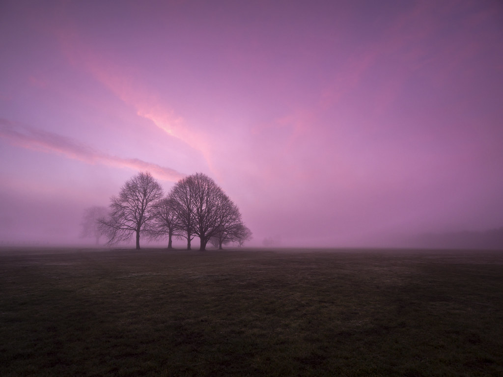 When The Morning Came by Damian Ward