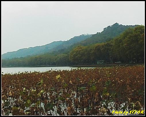 杭州 西湖 (其他景點) - 109 (從北山路的斷橋旁看北裡湖及北山路湖畔)