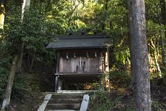 aekuni_shrine-18