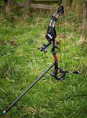 grass, sports, bow and arrow,