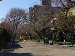 とらちゃんと三田公園(目黒区)