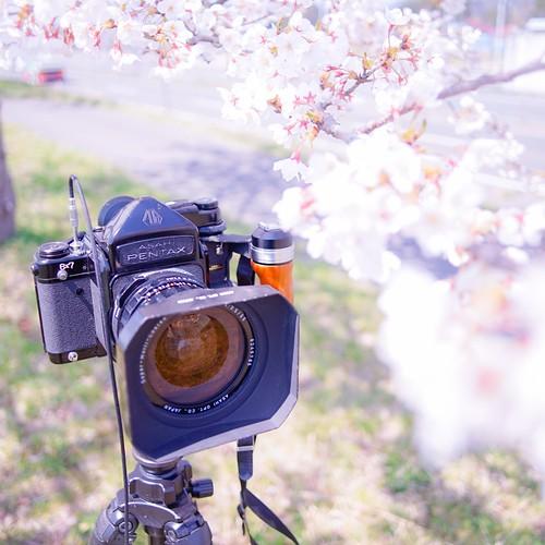 カメラロール-6790