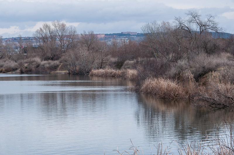 La Laguna del Campillo