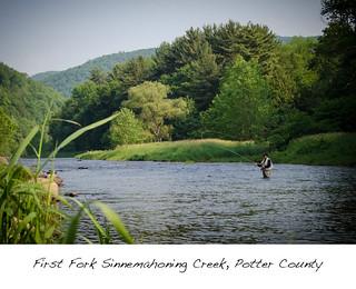 First Fork Sinnemahoning Creek