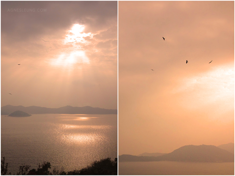 sunset-ap-lei-chau
