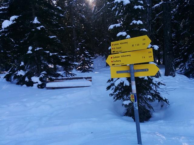 Einstieg in die Loipe, noch 1 Std. bis zum Gipfel des Dorfbergs