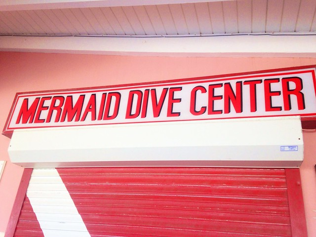I didn't dive. But I enjoyed the sign.