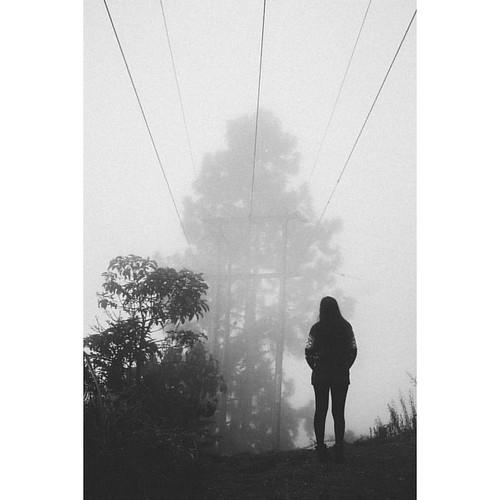 -Un poco de sol, un estrellón de ángel, y luego la niebla; y los árboles, y nosotros hechos de aire en la mañana-  #bnw #neoprimemag #niebla #elaguila #valledelcauca #ivnrjs
