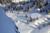 Winterlandschaft. Foto: Josef Mallaun.
