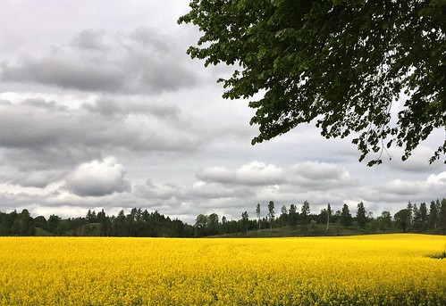 sweden country iphone6
