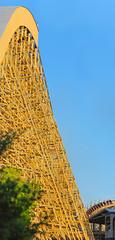 gold striker vertical panorama