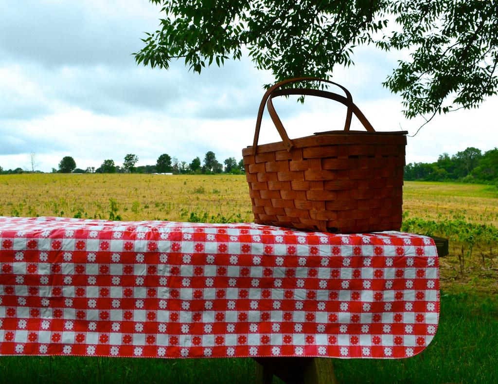 Picnic Basket Restaurant Happy Hollow : Italian checkered tablecloth