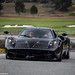 Pagani Huayra in the Wild by David Coyne Photography