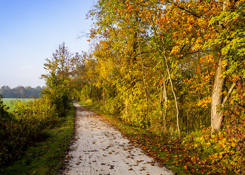 The Towpath in Fall Color