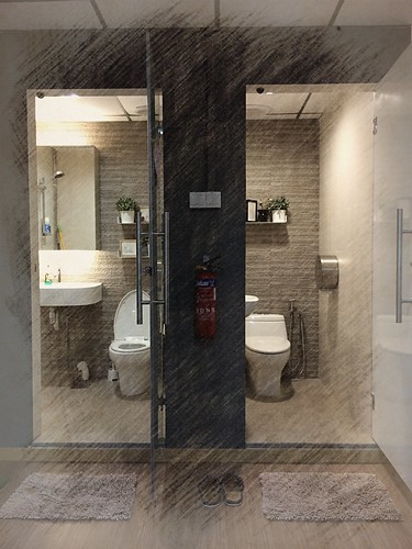 Twin Temple Toilets