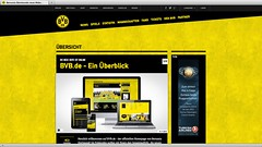 Screenshot bvb.de (nach dem Relaunch)