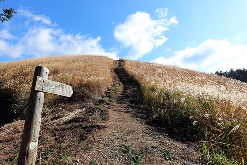 山頂への階段つらい
