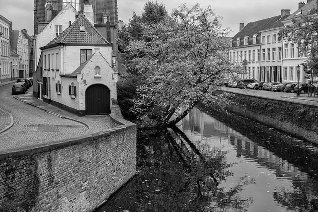 Canal's Edge - Bruges, Belgium