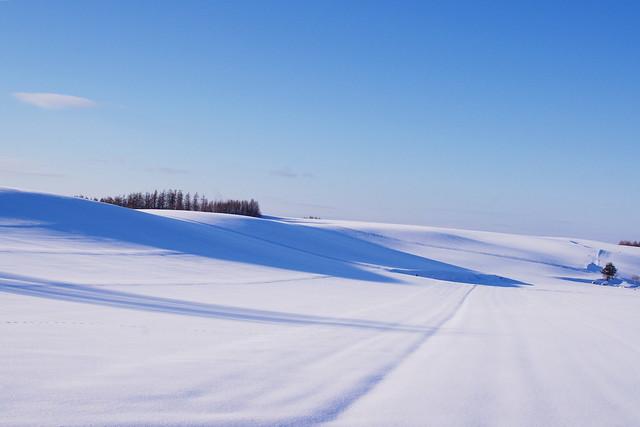 丘陵の影1