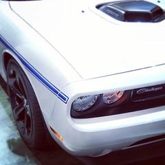 stock car racing(0.0), classic car(0.0), automobile(1.0), automotive exterior(1.0), vehicle(1.0), dodge challenger(1.0), bumper(1.0), land vehicle(1.0),