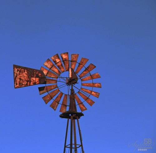 windmill rust kentucky ky louisville hiview {vision}:{sky}=0841 {vision}:{outdoor}=0972