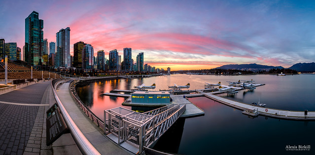 Coal Harbour Sunset