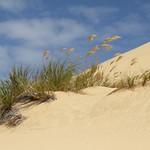 Sanddünen, Cape Reinga, Neuseeland