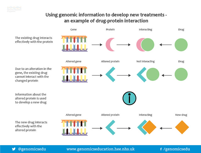 Using genomic information to develop new treatments-an example of drug protein interaction